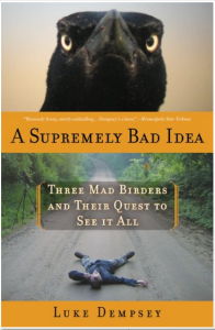A Supremely Bad Idea cover